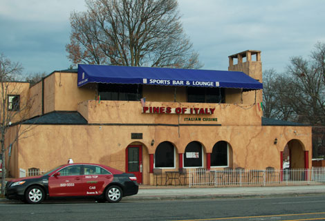 Pines of Italy, Columbia Pike
